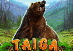 Слот Taiga