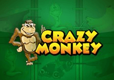 crazy monkey слот онлайн казино